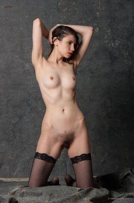 salope Stella